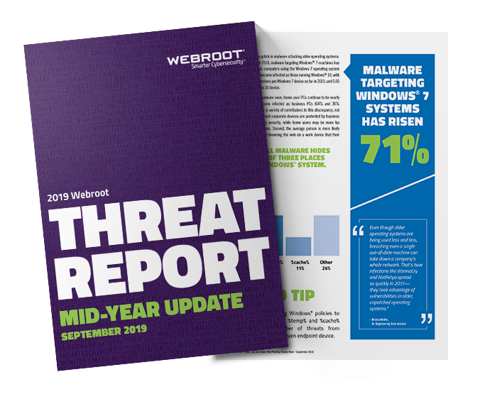 2019 Threat Report Mid Year Update