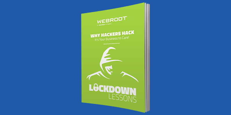 Why Hackers Hack eBook Thumbnail